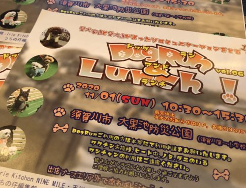 『DogRun&Lunch! vol.06!!!』